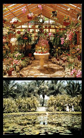 Bonnet House Museum Grounds Historic Garden Fort Lauderdale Fl